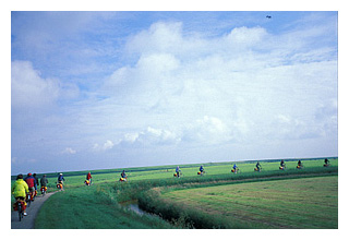Line of Cyclists in a Ijsselmeer Polder